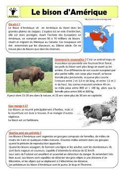 Le bison d 39 am rique fiche documentaire le bison alysse - Fiche de lecture effroyables jardins ...