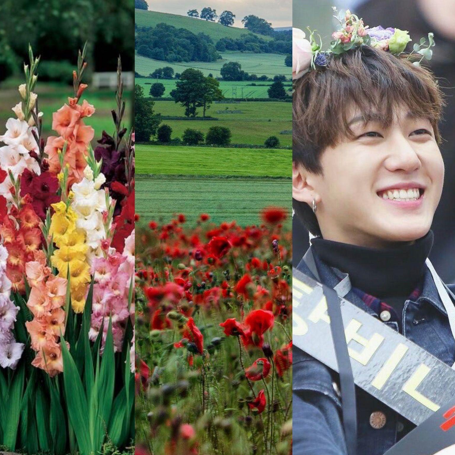 BirthFlowers&KPOP // Changbin of StrayKids Birth flowers