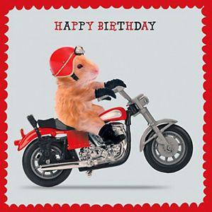 Hamster Motorbike Birthday Card Thunder Road Funny Biker Greeting