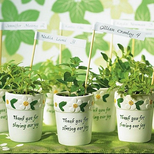 Mini Flower Pots Set Of 6 Perfect Gifts For Your Guests To Take Home Babyshowerunique Wedding Favorsplant