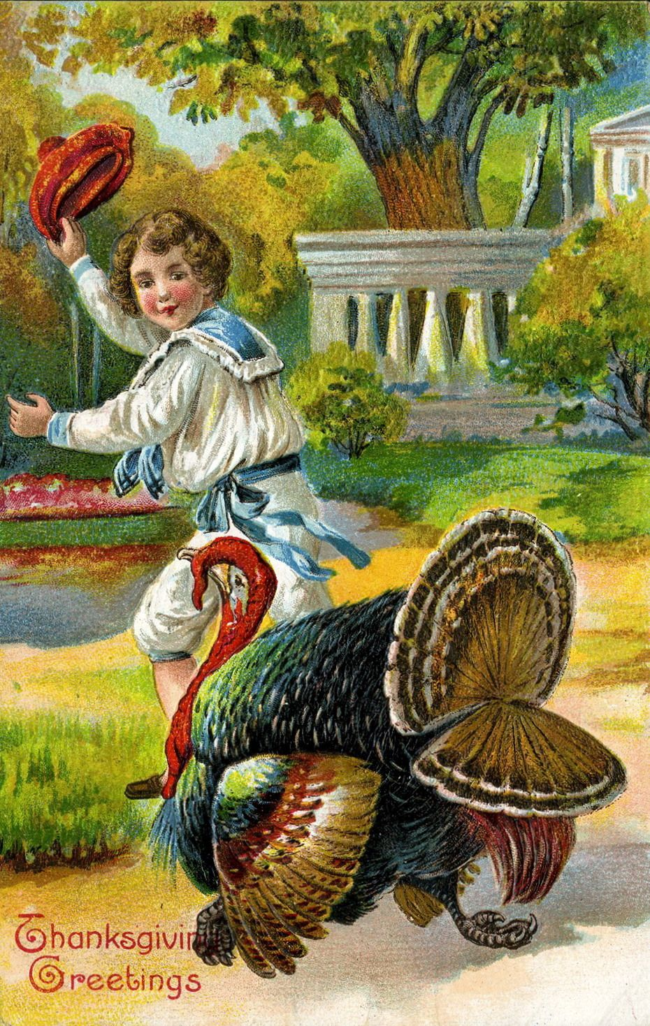 Vintage thanksgiving postcard boy and turkey