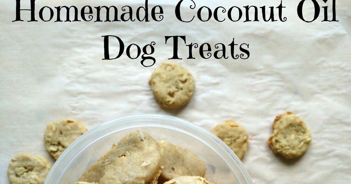 Homemade Coconut Oil Dog Treats Healthy Dog Treats Homemade Dog