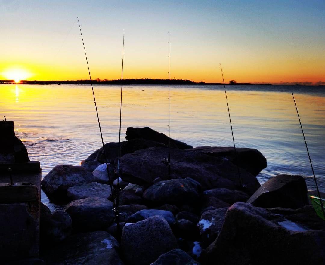 Kevättä ilmassa #siikakausi avattu. Saaliina kärtsätty naama. #siianonginta #siika #kalastus #pohjaonki #kevät #auringonnousu #ruuhkarannat by stenfoa