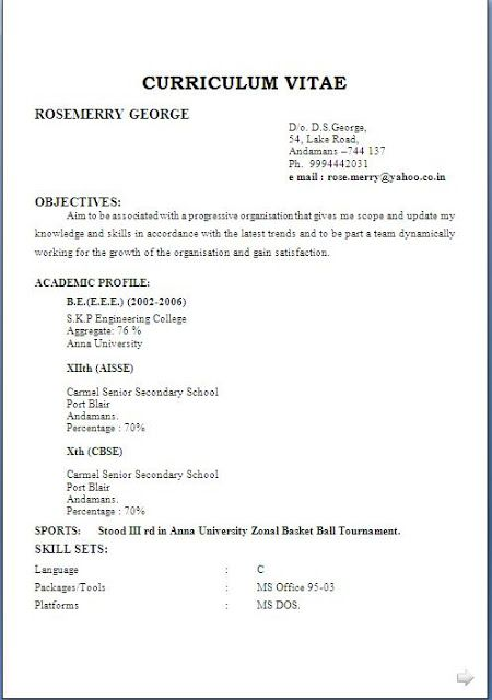 Resume Language Skills Skills Examples For Cv Excellent Curriculum Vitae  Resume  Cv