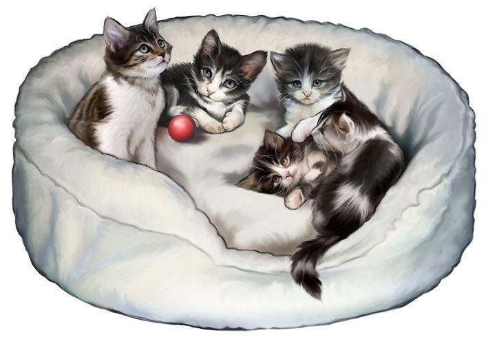 https://www.behance.net/gallery/Illustrations-Pets/1971443