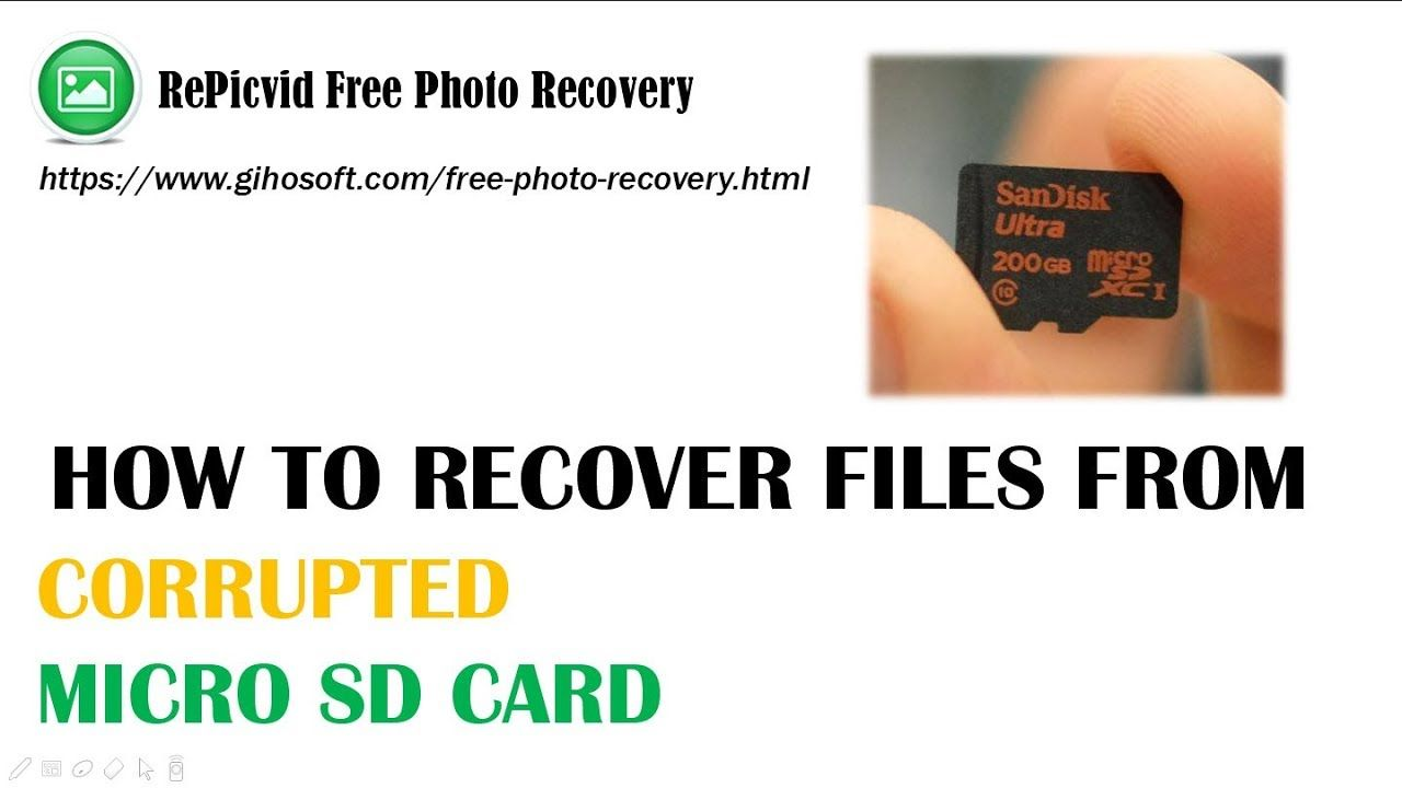 Pin On File Recovery