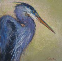 Curious Heron by Amanda Houston