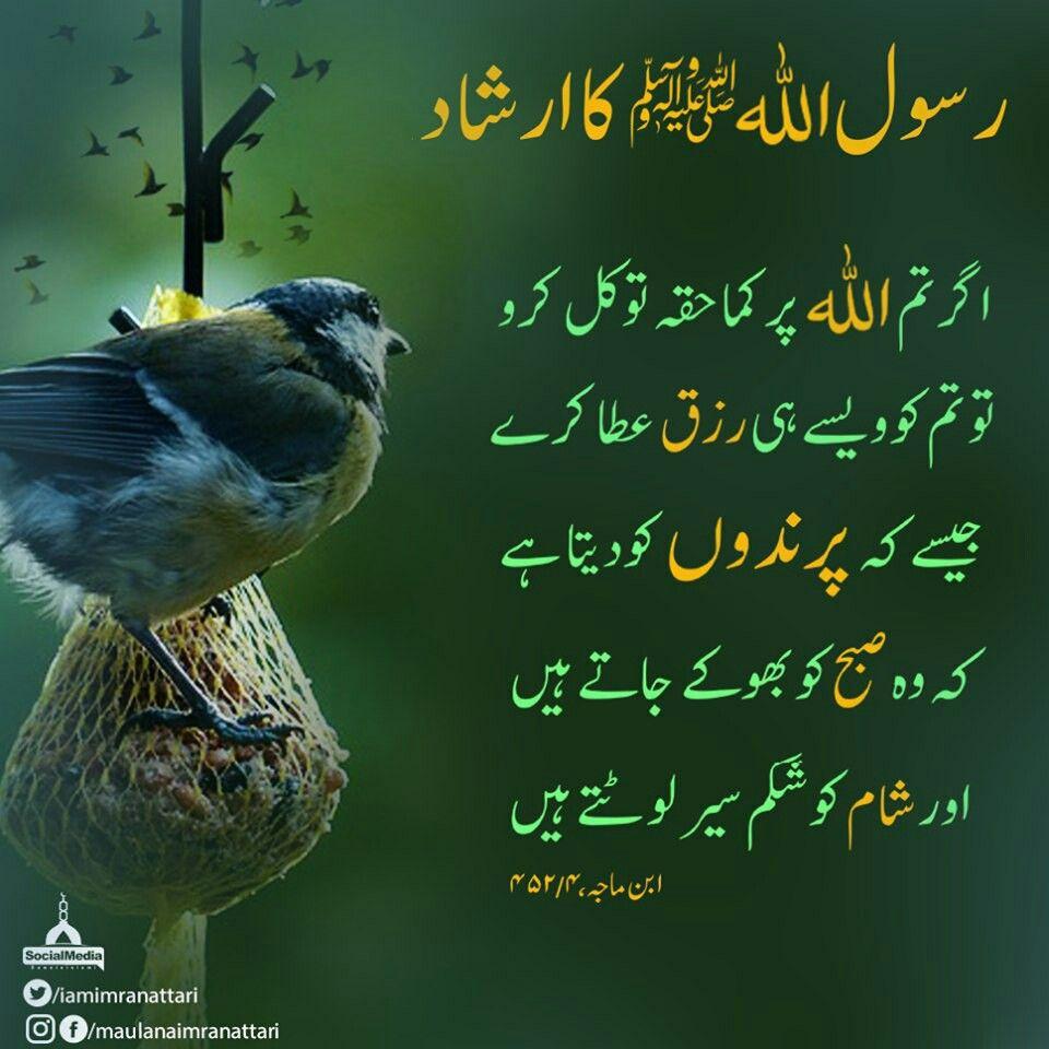 Pin By Riazaedhi On Ilm Noor Hai Hazrat Imam Hussain Islam Quran Islam Hadith