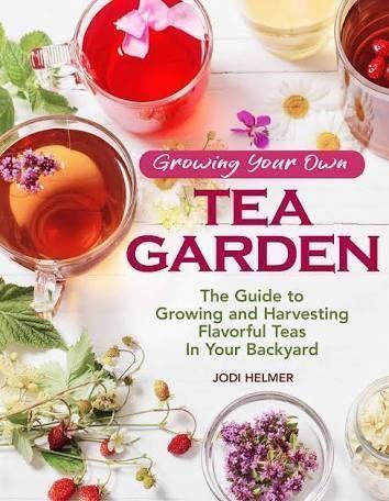 Photo of Grow Your Own Herbal Tea Garden Herbal Tea herbal tea garden