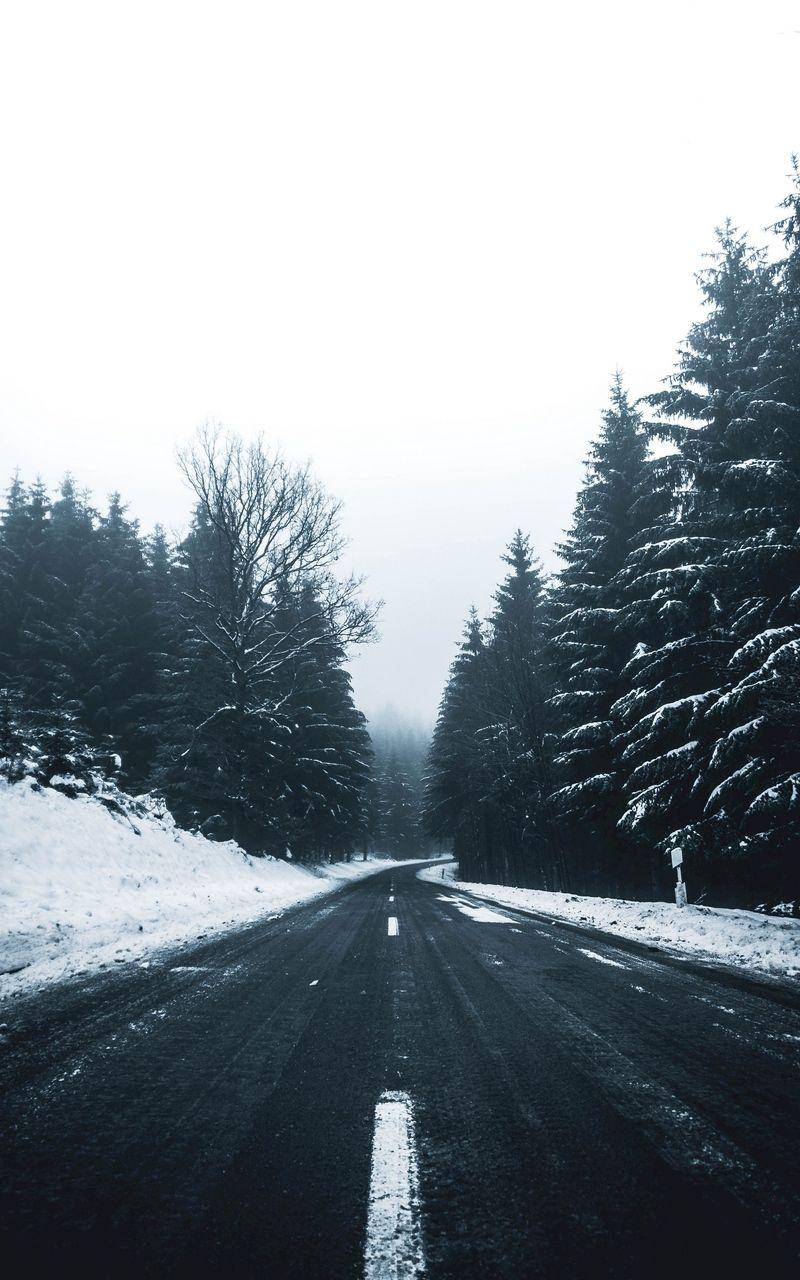 Wallpaper Turn Markup Winter Trees Snow Road Winter Wallpaper Desktop Winter Wallpaper Hd Winter Wallpaper Hd wallpaper snow winter road asphalt