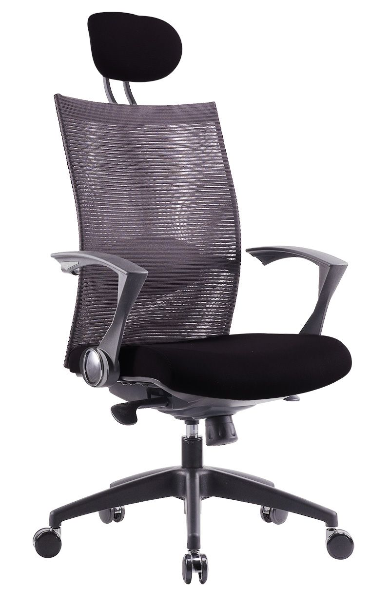 VITO TYPE C   Presidential Mesh High Back Chair (CL3339 C)