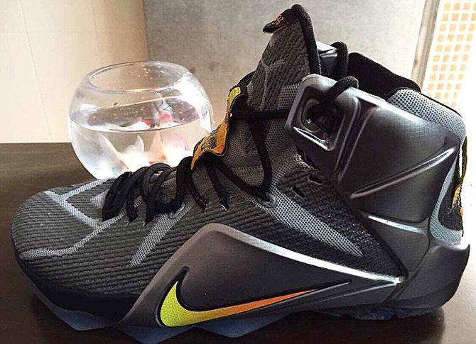 Nike LeBron 12 Flight  065218769c4