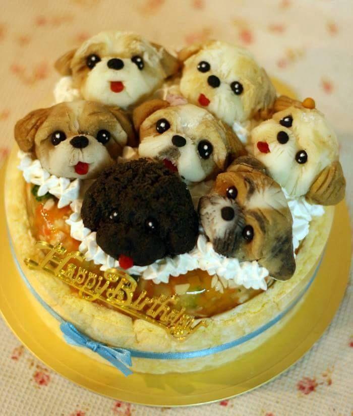 Amazing Birthday Cake For Dog Lovers Birthday Cake For Cat