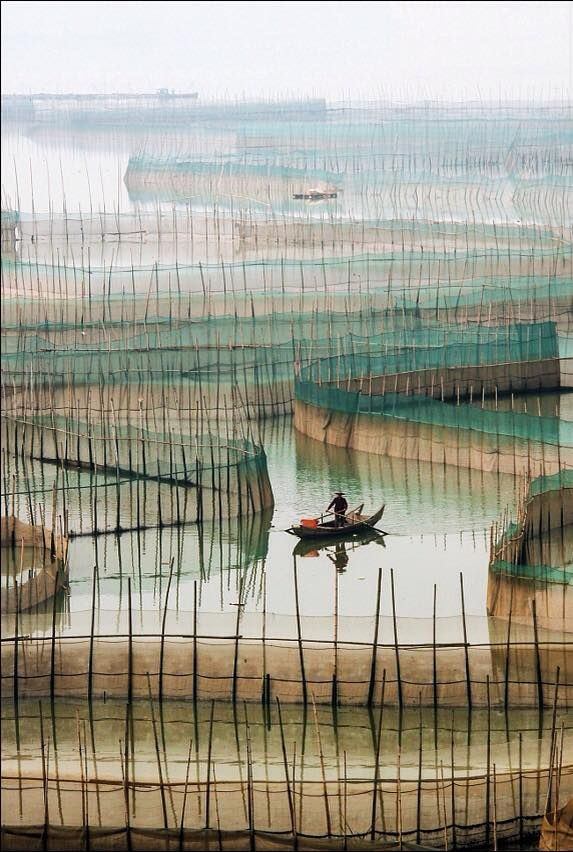 ChingYang Tung   Photo, Photography, Pictures