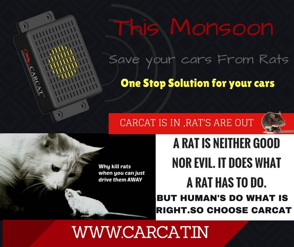 Carcat is in Rat's are out. Protect your cars this monsoon