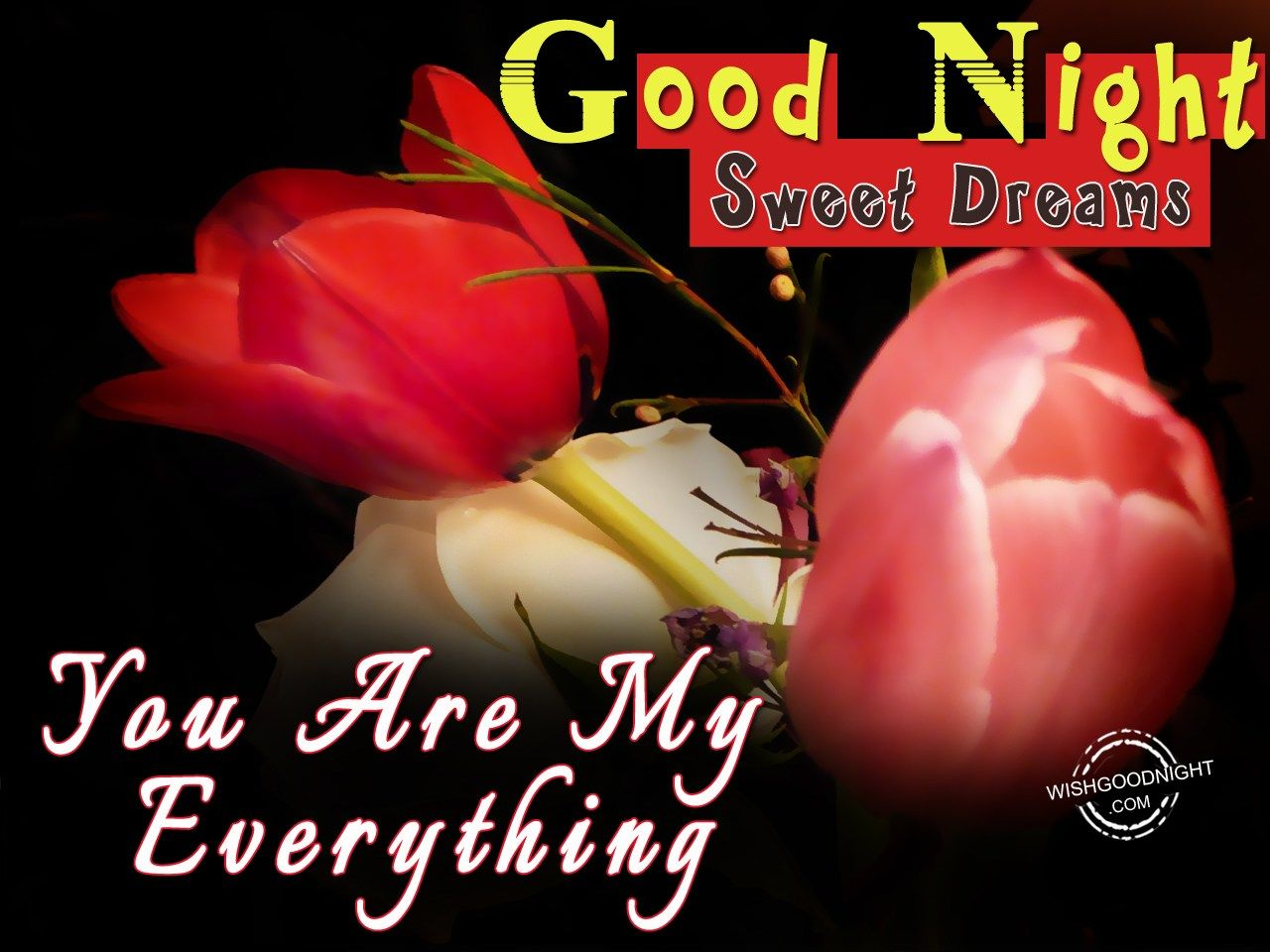 Love Good Morning And Good Night Wallpaper : Good Night My Love Images Good Night Wishes Quotes ...
