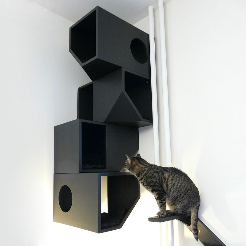 Modern Cat House catissa: cat house http://www.floppycats/catissa-cat-house