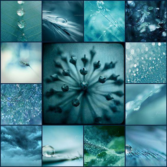 Farbkombinationen Blau Grau: Inspirationen Aus Der Natur! Kerstin Tomancok Farb-, Typ