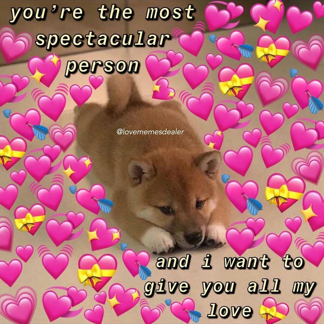 Pin By Annika Tuls On Reaction Pics Love Memes Cute Memes Cute Love Memes