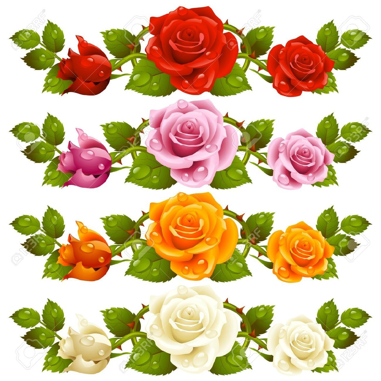 Vector Rose Horizontal Vignette Isolated On Background Red ... for Vector Rose Flower Png  268zmd