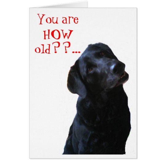 Funny Greeting Card Black Lab Dog Tipping Head Wishing Happy Birthday