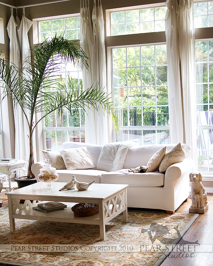 Pin By Jenny Swenson Froh On My Home My Style Beautiful Living Rooms Cozy Living Room Warm Traditional Living Room #palm #tree #for #living #room