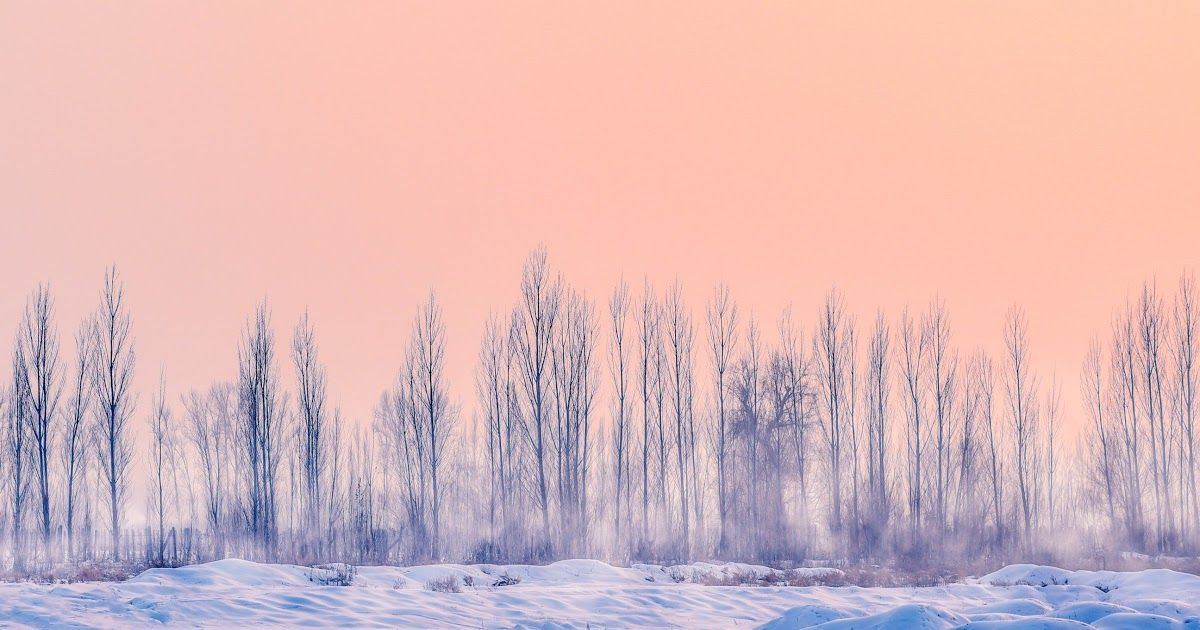 20 Nature Aesthetic Winter Desktop Wallpaper Weve Gathered More Than 3 Million Images Uploaded By Our Users In 2020 Winter Wallpaper Pastel Background Pastel Sunset
