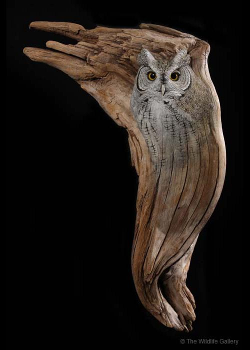 Earl martz wood carving with owl illustration i heart