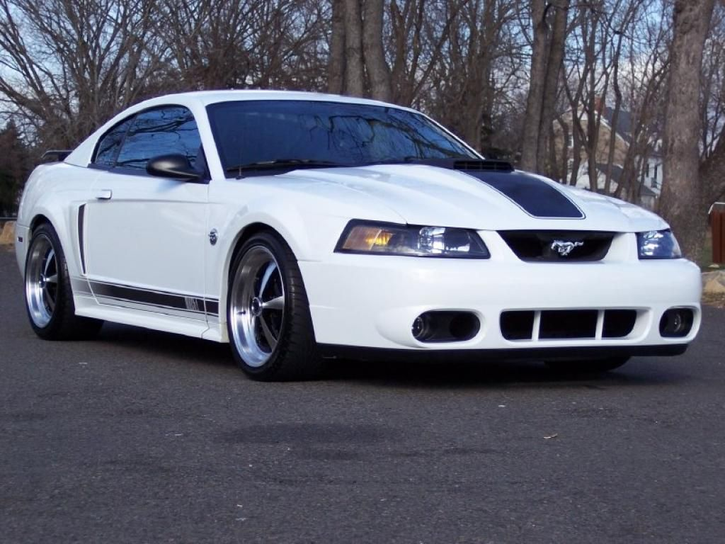 2003-04 Mustang Mach 1 front three quarters - NO Car NO Fun! Muscle Cars and Power Cars!