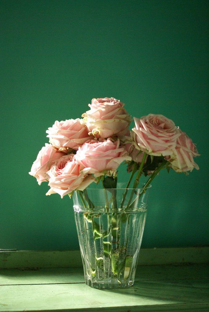 https://flic.kr/p/7j8sGp | pretty pink roses | blogged by sfgirlbybay