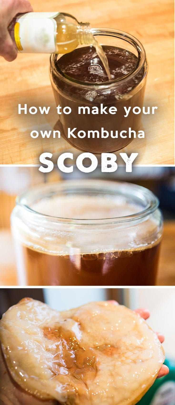 How to Make Your Own Kombucha Culture SCOBY In order to