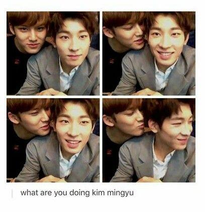 MENCANTA ESTA PAREJE. #MingyuYWonwoo