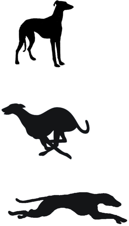 Whippet Silhouettes Tatuaje De Galgos Arte De Galgos Pintura Perro