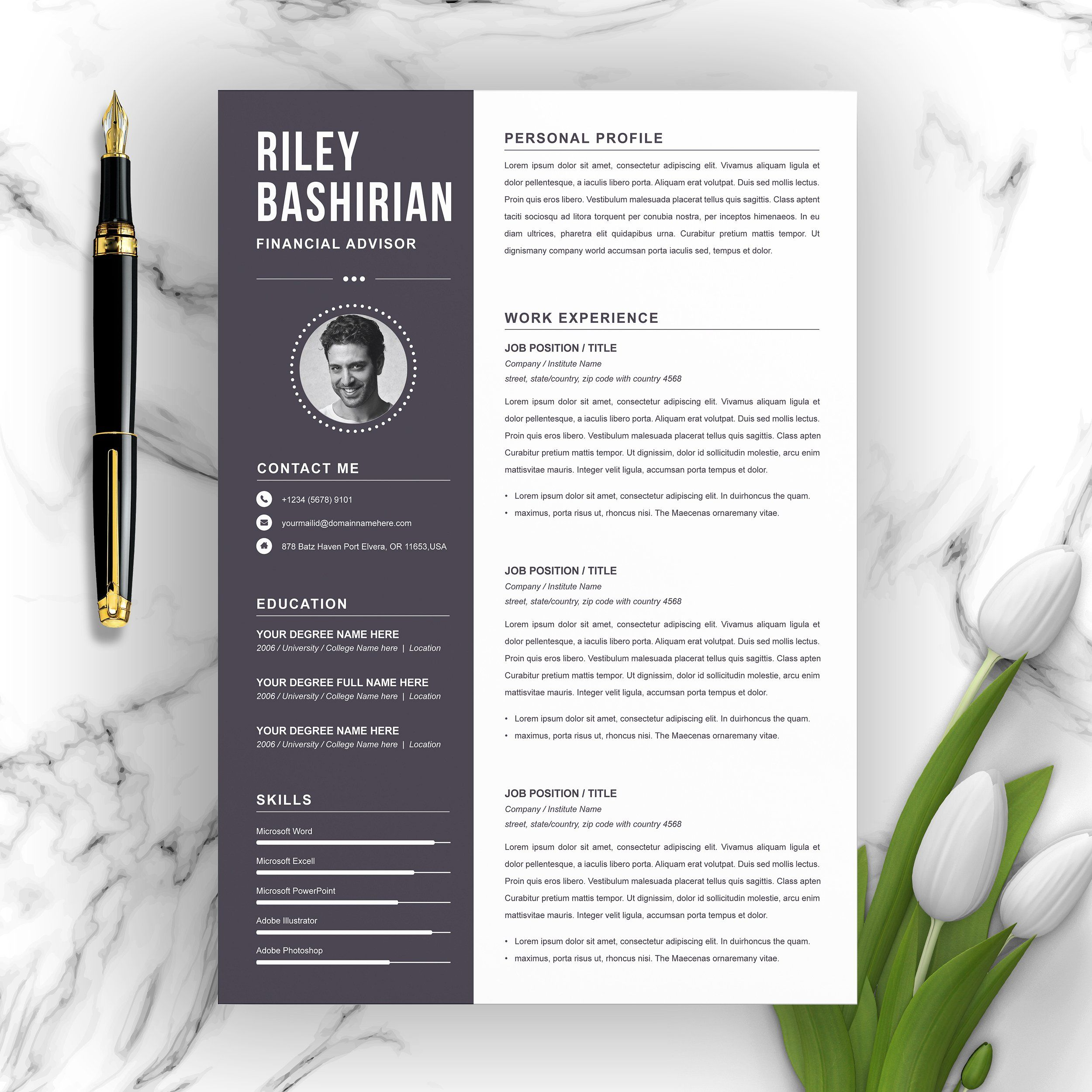 Professional Resume Cv Template Professional Resume Cv Template Resume Template Professional