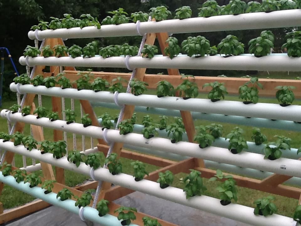 Merveilleux Hereu0027s An Incredibly Efficient System That Grows 168 Plants In A 6 X 10  Space By Using An A Frame Hydroponic System. Itu0027s An Effortless Way To Grow  A Lot Of ...