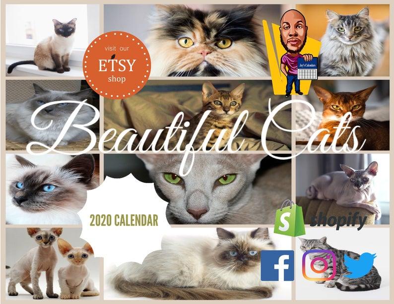 Beautiful Cats 2020 Calendar Etsy in 2020 Beautiful