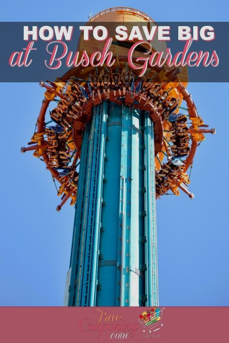 56a6d23cfafde873159541540b899192 - Price Of Tickets To Busch Gardens