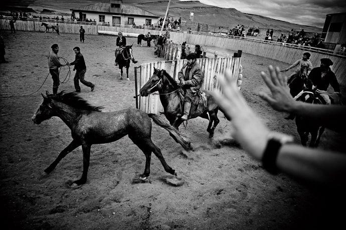 Rodeo, Cerro Castillo, Patagonia, Chile, 2008    Photo © Mustafah Abdulaziz / MJR