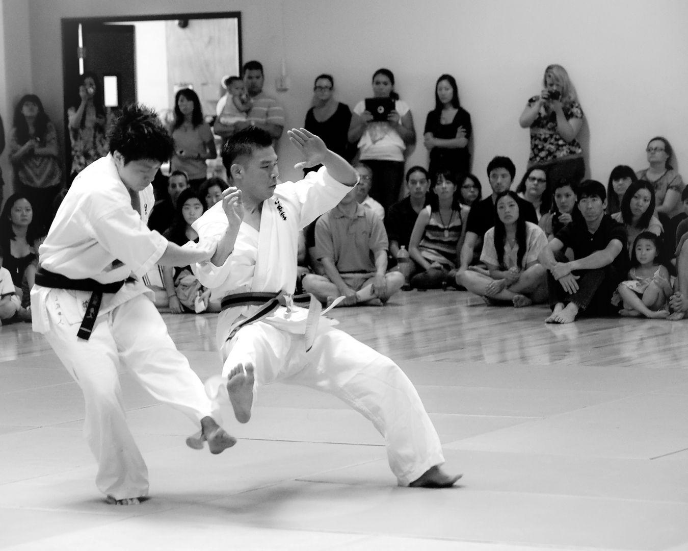 Lucha libre de karate
