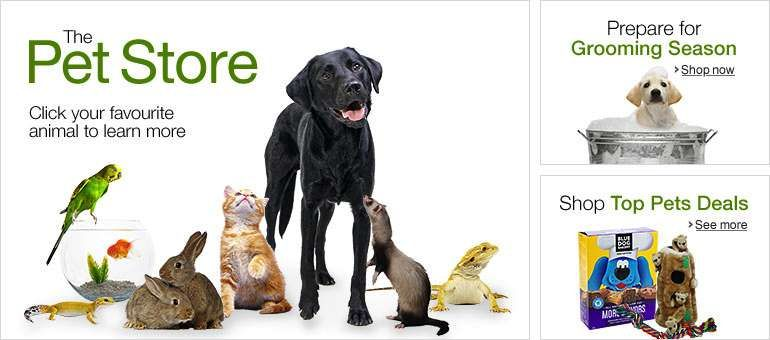 Online Pet store for everyone Largest Online Shopping