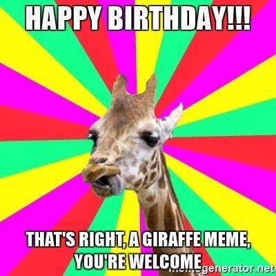 giraffe birthday meme Giraffe Happy Birthday Meme | Happy Birthday!!! That's right, a  giraffe birthday meme
