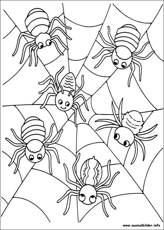 Spinnen | Kindergarten | Pinterest | Halloween malvorlagen ...