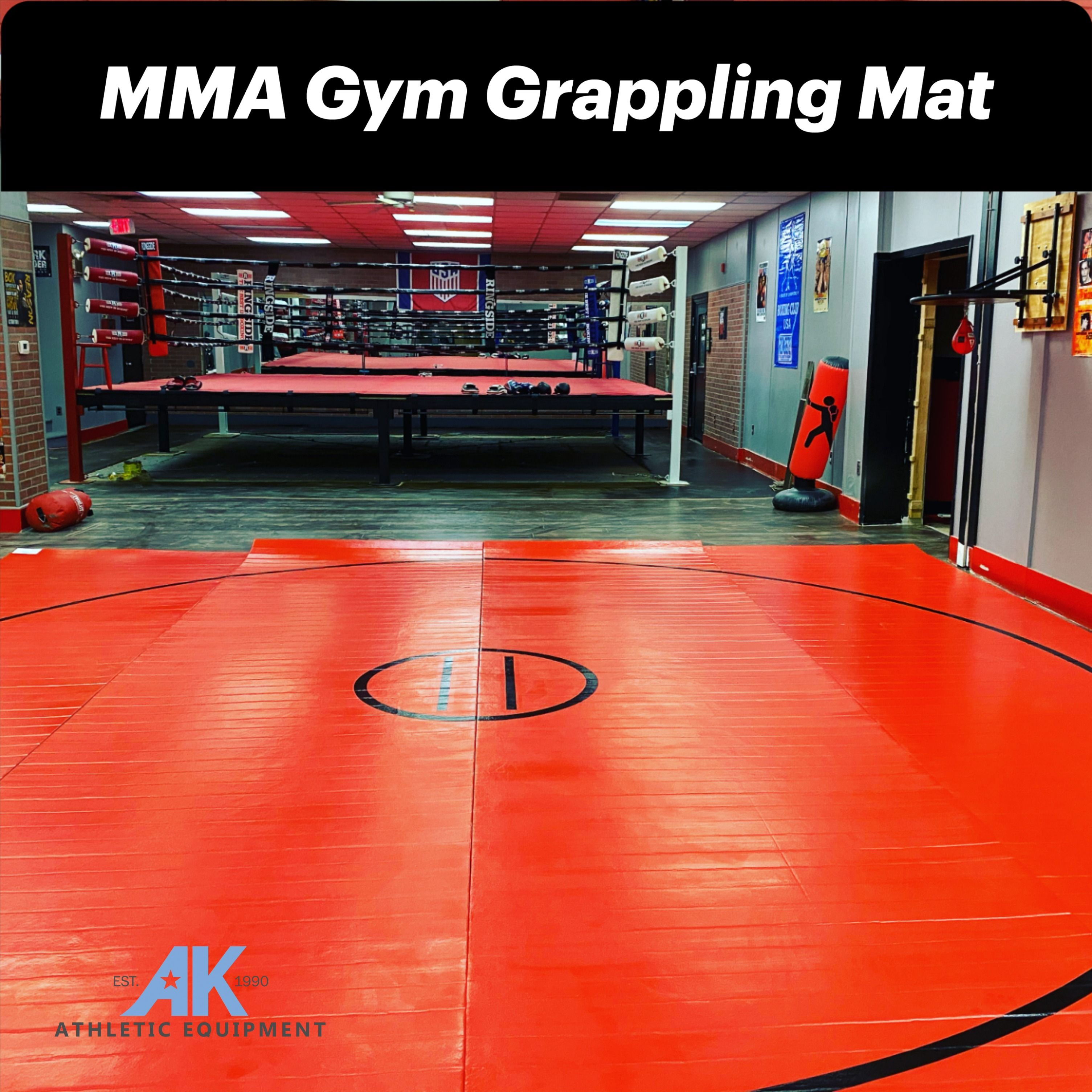 20 X 20 X 1 3 8 Roll Up Wrestling Mat In 2020 Ufc Training Boxing Gym Design Martial Arts Gym