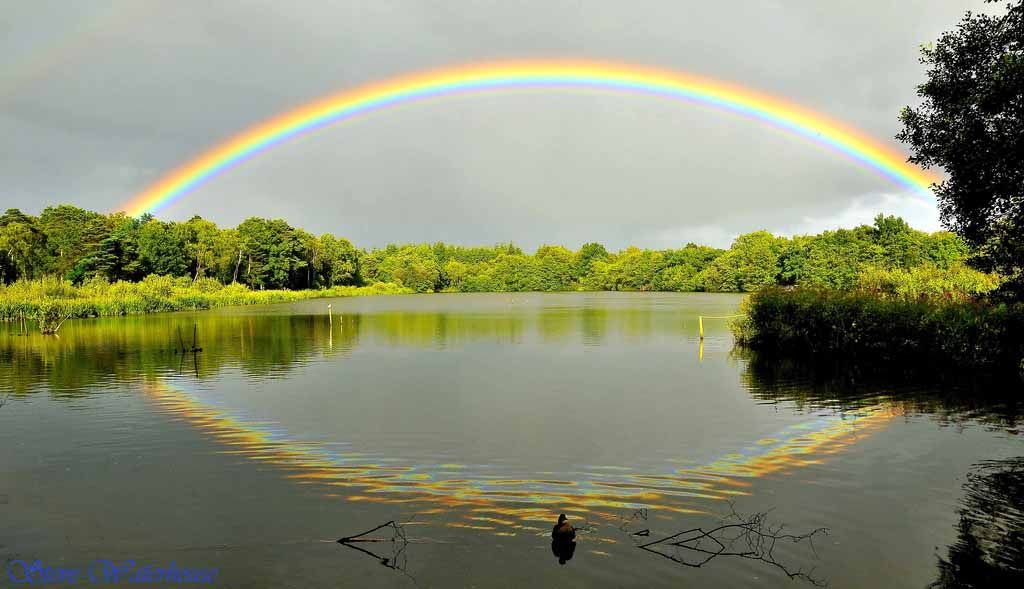 25 of the Worlds Most Beautiful Rainbow photography examples. Read full article: http://webneel.com/beautiful-rainbow-photography   Follow us www.pinterest.com/webneel