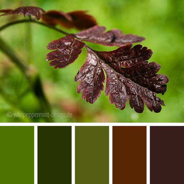 #Farbpalette #Herbst, herbtliche Farbpalette, Farbinspiration, #gedeckte #Herbstfarben, grün, braun // © wildpepeprmint-design.de