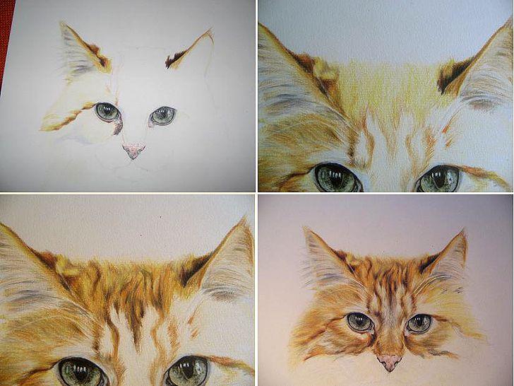 eine katze zeichnen mit buntstiften zeichnung pinterest katze zeichnen buntstifte und. Black Bedroom Furniture Sets. Home Design Ideas