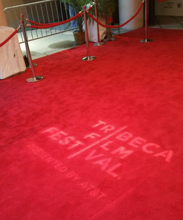 Diary of a Camera-Bitch on the Red Carpet