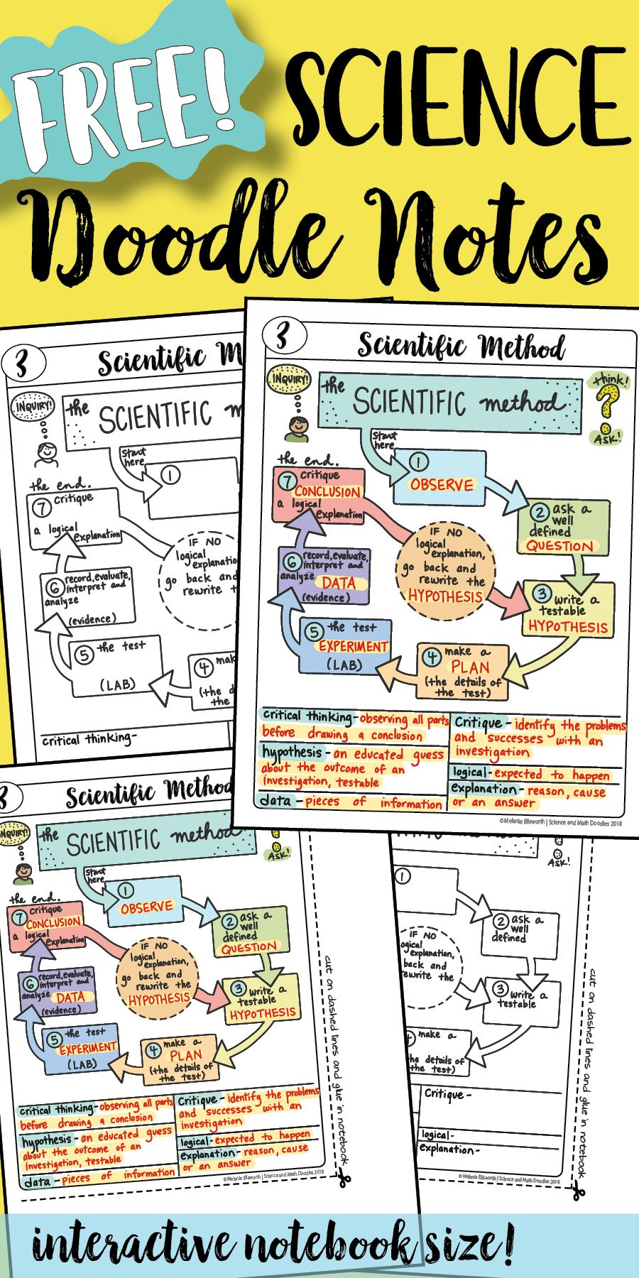 Free Free Free Science Doodle Notes So Easy To Use Just Play The Powerpoint For The Key Love These Science Doodles Science Notes Science Notebooks