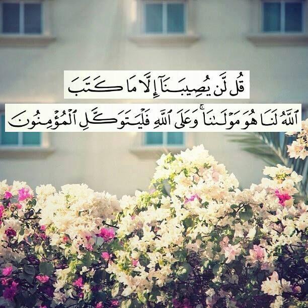 قل لن يصيبنا الا ما كتب الله لنا هو مولانا وعلى الله فليتوكل