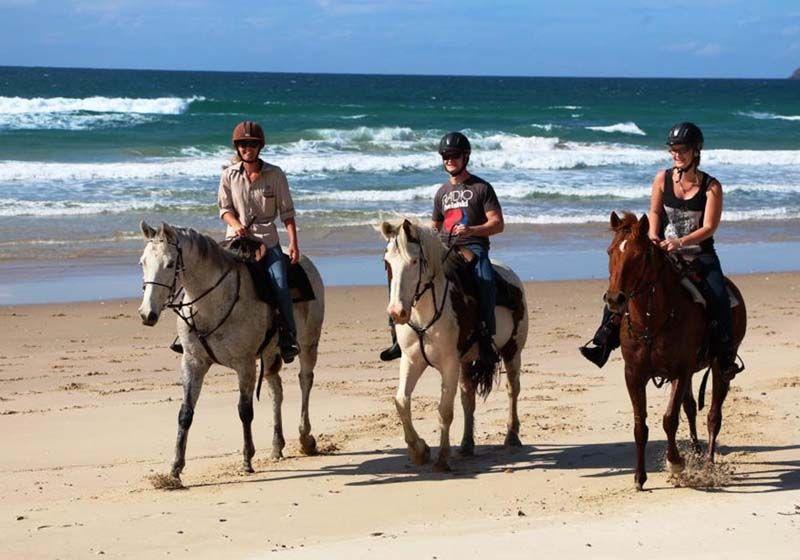 Wisata Naik Kuda Di Bali Paket Wisata Di Bali Bali